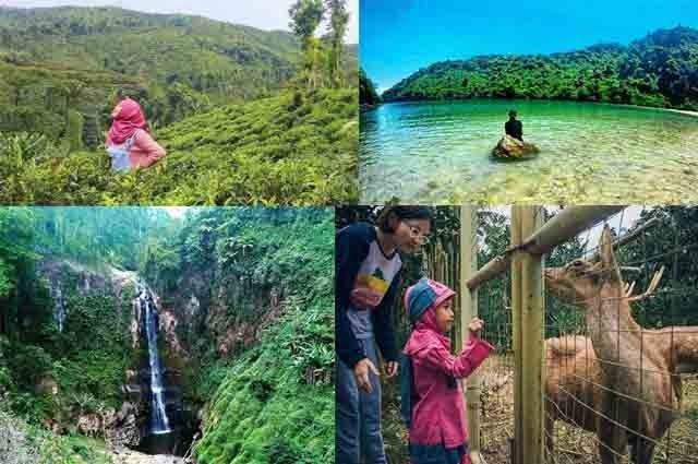 Fantastis 30 Pemandangan Yang Paling Bagus Tempat Wisata Di Jember Terbaru 2020 Dengan Biaya Yang Murah Download The World S Di 2020 Pemandangan Pantai Pariwisata
