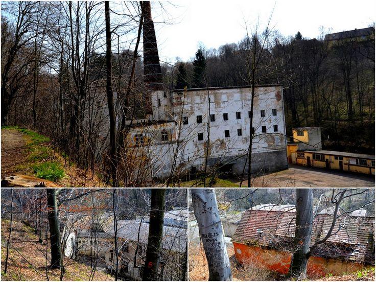 Baworowo - fabryka pełna tajemnic | GEOCACHING z VERENNE