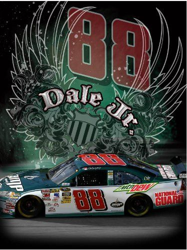 Dale Earnhardt Jr 550 piece jigsaw puzzle $13.99