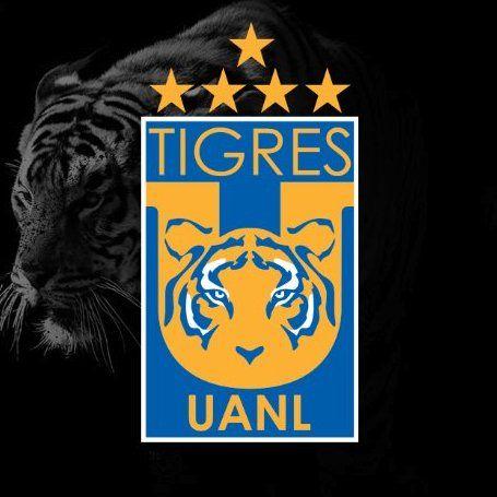 Resultado de imagen para uanl tigres
