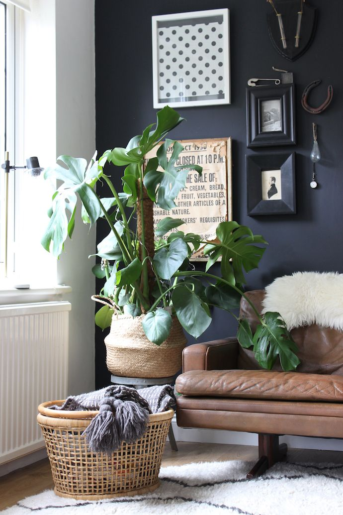 Living room mini makeover | Growing Spaces