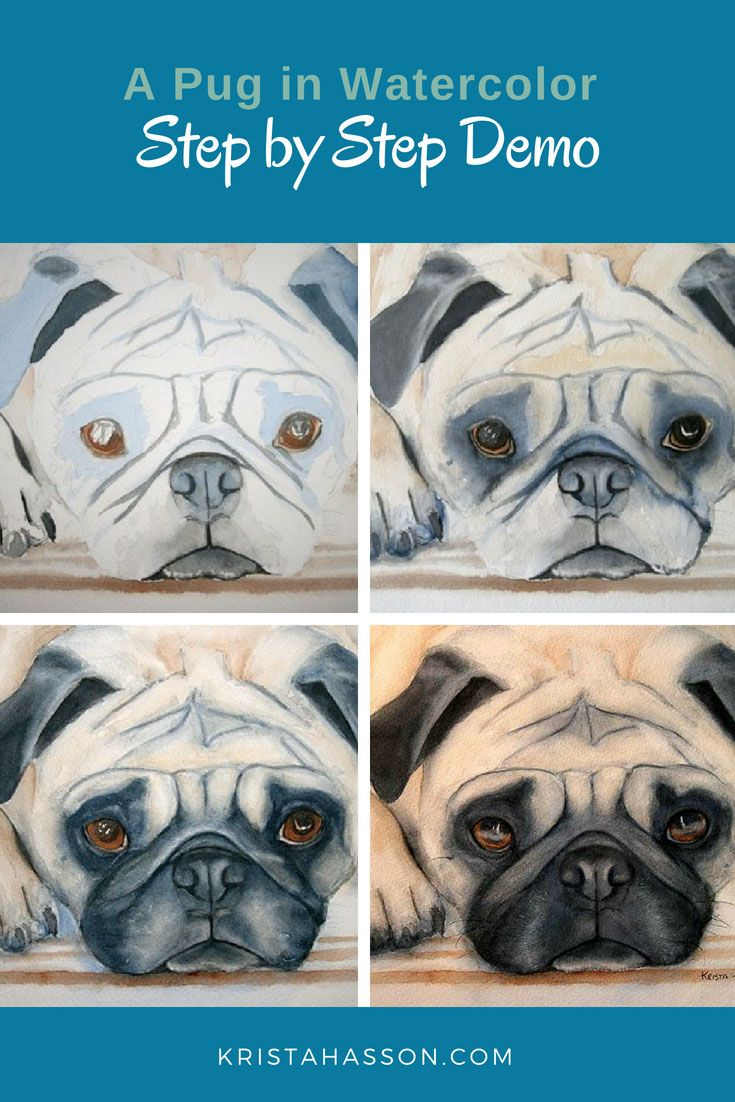 Pug Demo Painted In Only 2 Colors Step By Step In Watercolor