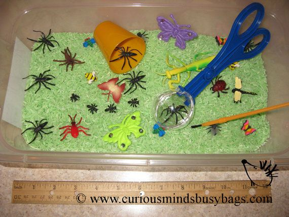 Bugs Sensory Bin or play set   Toddler by CuriousMindsBusyBags, $7.50