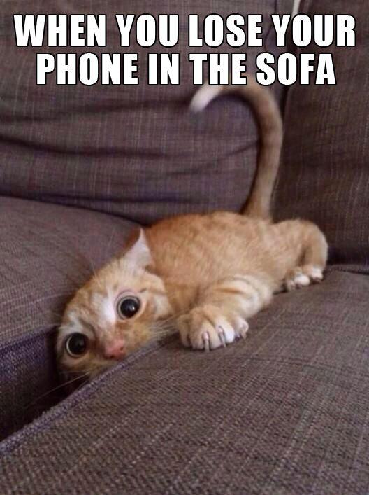 121 Best Cell Phone Humor Images On Pinterest Ha
