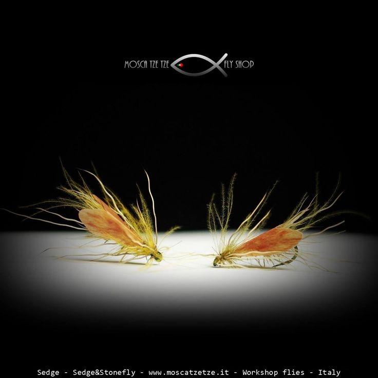Sedge – Moscatzetze.com