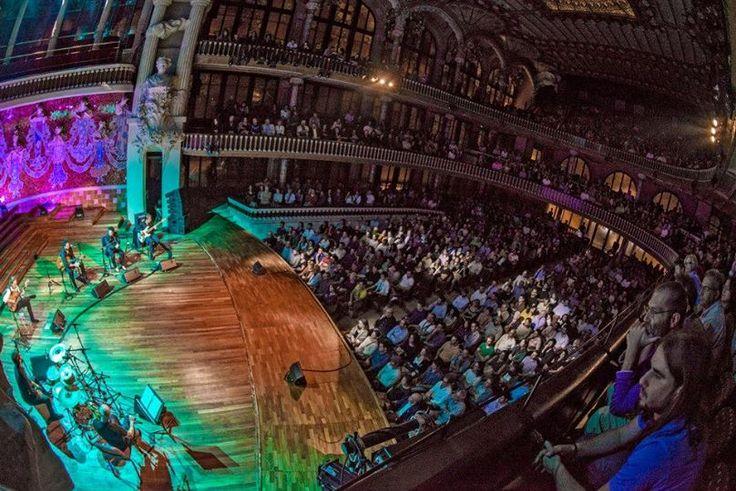 Vicente Amigo #chitarra #flamenco #musica #concerto #arte #teatro
