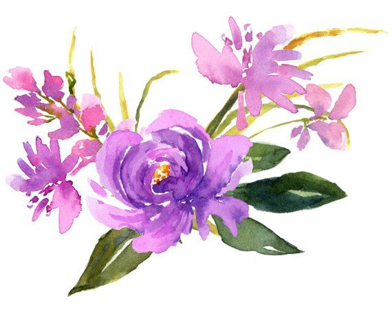 Purple Flower Designs Watercolor Cip Art Lavender