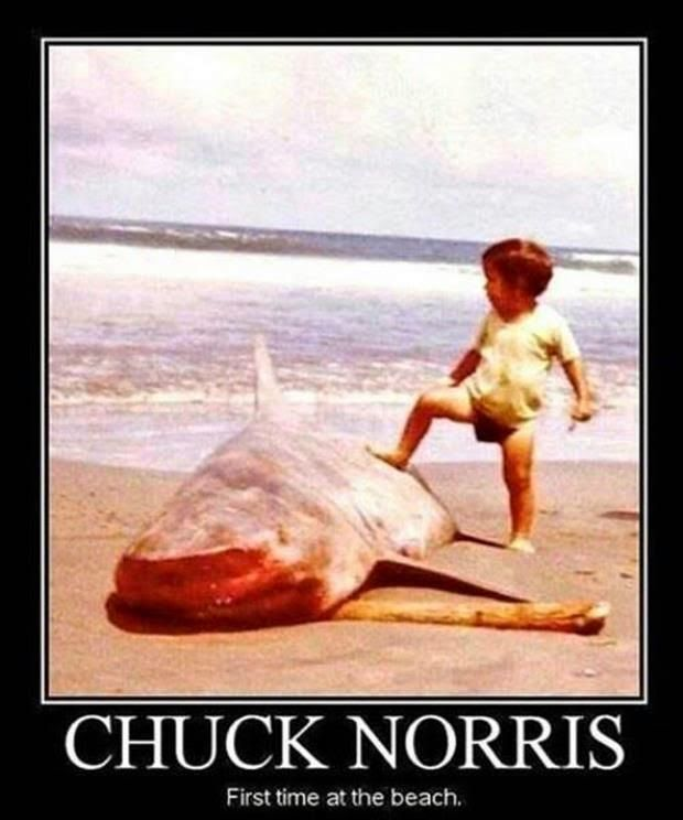 We all know Chuck Norris, The american martial artist, actor, film producer and screenwriter. But the internet always make fun of celebrities and especially chuck norris. Now Let's take a look for the best and funniest memes for this actor!… Continue Reading →