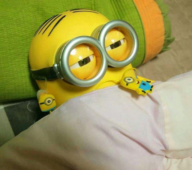 678 best Minions images on Pinterest Despicable me