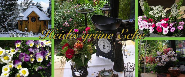 Heidi's grüne Ecke - Gartenblog