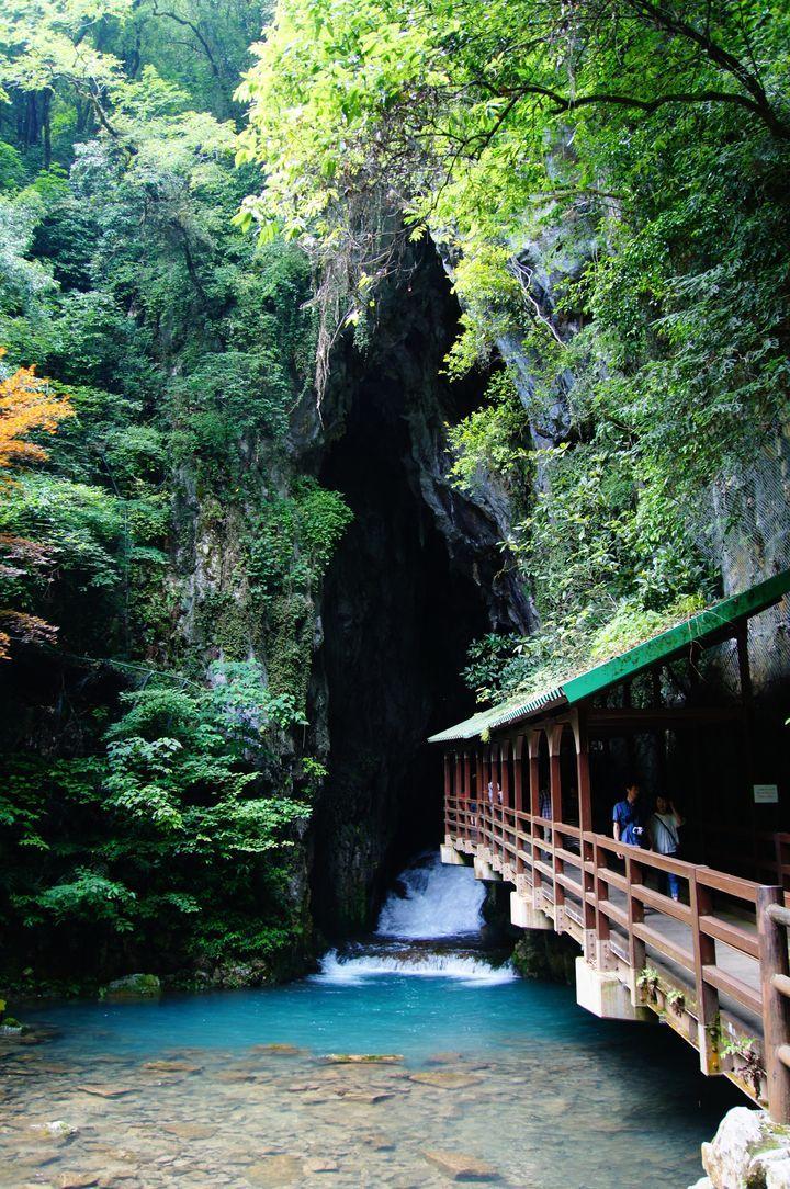 観光地としては、まだそれほど有名とは言えない「山口県」。しかし、自然に恵まれた山口県には、本当に美しい観光スポットがたくさんあります!これを読み終わったときには、きっと山口県に行きたくなることでしょう。