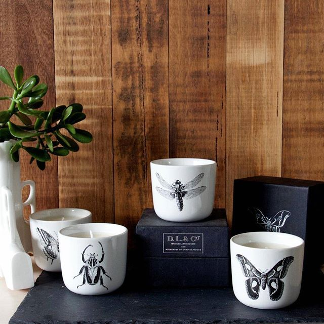 This weeks Candle Of The Week is the full Bestiola Range from DL & Co. Get 15% OFF all week long. Shop through the link in our bio.  #TheCandleLibrary #scentedcandles #insects #bestiola