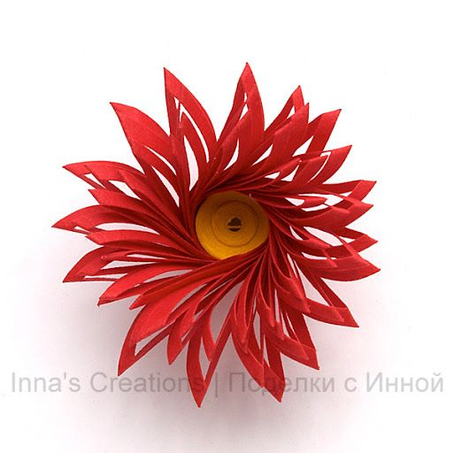 Fringed flower with a center