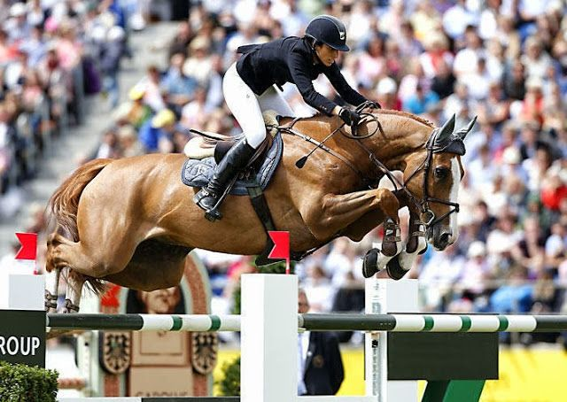 The 15 million dollar horse! Edwina Tops-Alexander of Switzerland is the new & proud owner of the Ch gelding Palloubet d'Halong.
