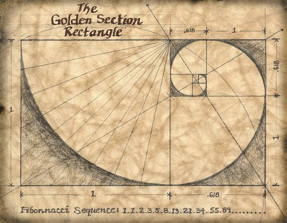 The Golden Section 11 x 14 Art Print Mathematics by GeographicsArt