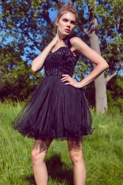 Siyah Taşlı Mini Tül Elbise - Fotoğraf