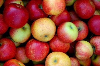 10 Fall Foods To Look Forward To