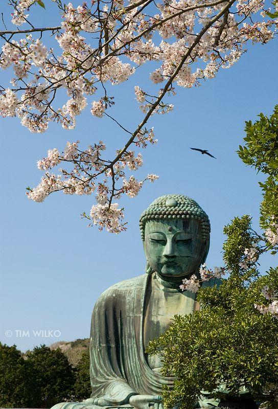 Kamakura by Tim-Wilko