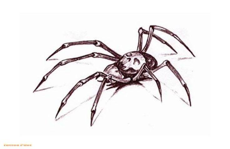 alluring Wonderful Spider Tattoo Designs