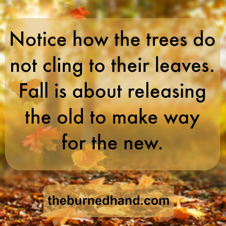 The 25+ Best Quotes About Autumn Ideas On Pinterest