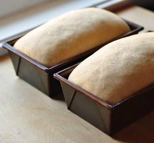 make better sandwich bread...yes, good idea.