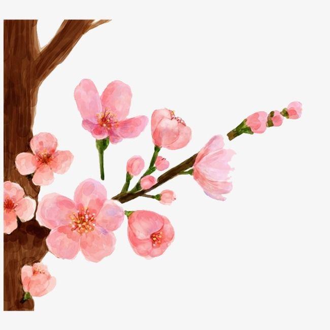 Dibujo Peach Flores Pintadas Arbol De Durazno Flores De Durazno