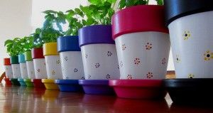 Let your imagination fly : use all the colors in the rainbow to paint your pots!!