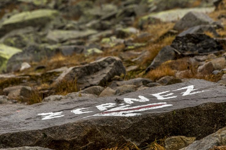 Direction Zernez   Hiking in #Switzerland