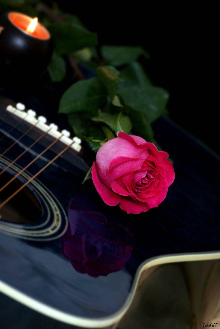 больше живые картинки с цветами и музыкой обучали направляли эльдар