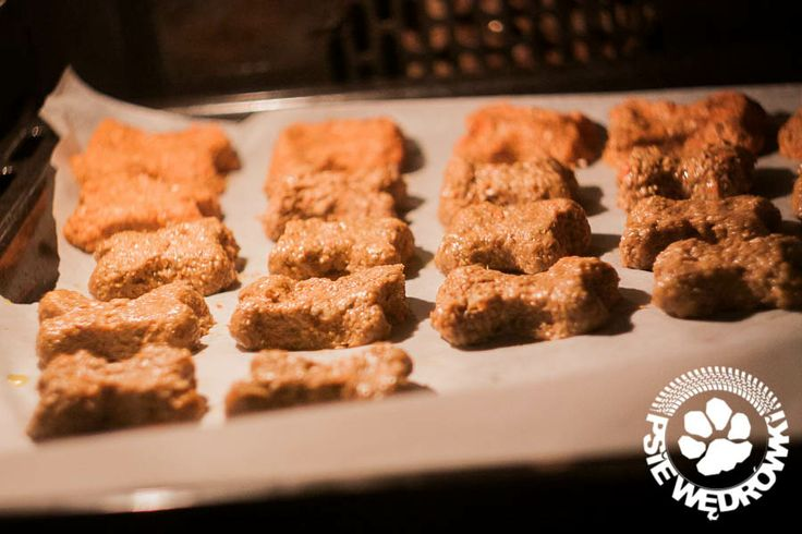 Psie ciasteczka #dog #cookies
