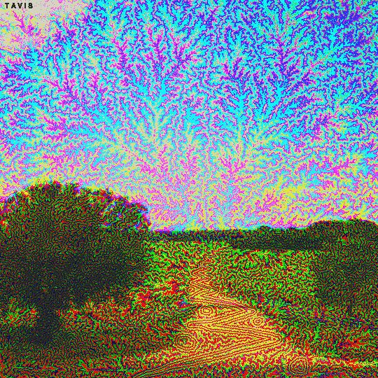 """billtavis: """"farm road """""""