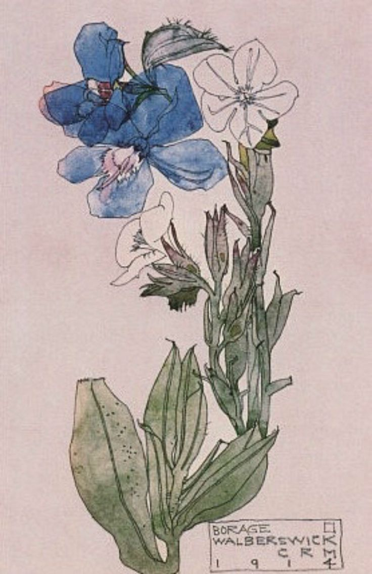 Borage, Walberswick, by Charles Rennie Mackintosh and Margaret Macdonald Mackintosh, 1914
