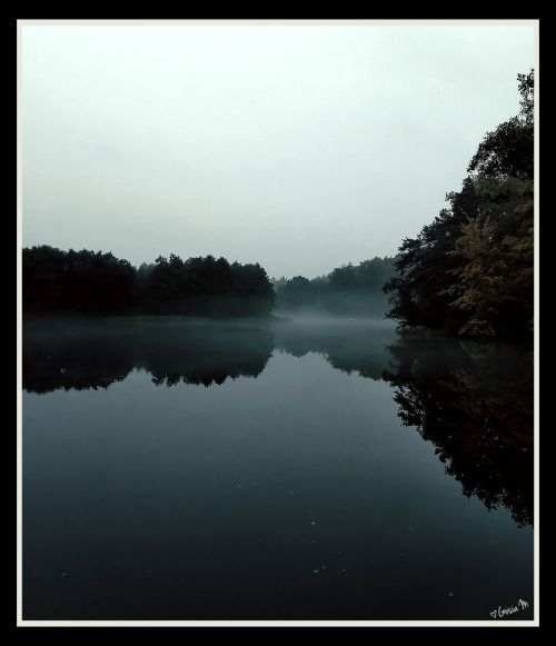 by ♡Gosia M more: http://xgosia-mx.tumblr.com   &   https://www.facebook.com/gosiamphoto  #lake #gosiam #forest #wood #fog