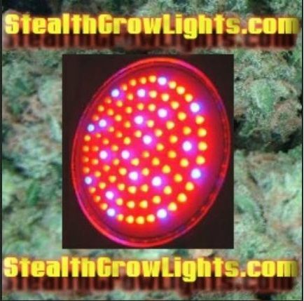 high powered led grow lights best led grow light on the market. Black Bedroom Furniture Sets. Home Design Ideas