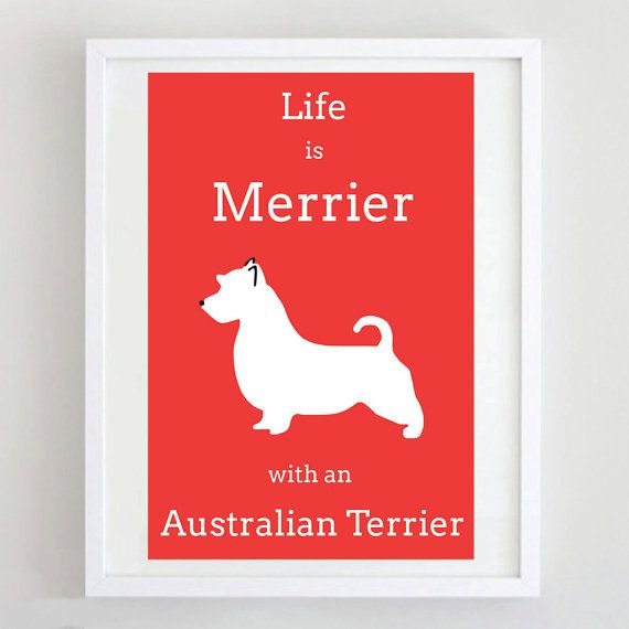 Australian Terrier Print  Dog Art  Dog Poster  by ForeverFoxed, £18.50