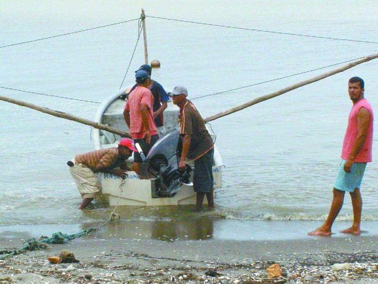 Los efectos del fenómeno climático van desde el aumento de la temperatura y la salinidad de las aguas oceánicas hasta una mayor productividad de las pesquerías