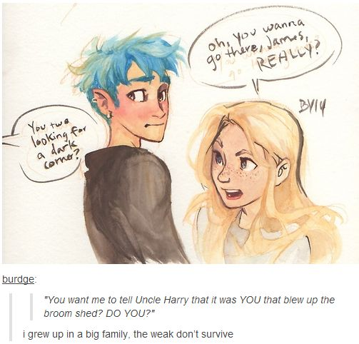 by Burdge Teddy Lupin and Victoire Weasley, after being caught snogging :)