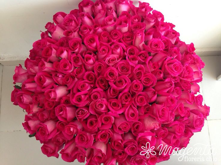 #RAMOSdeROSAS #200ROSAS #ROSASrosas #arreglo #globos #ocacionEspecial #amor #mujer #pareja #regalo #detalle #lujo #pasion #flores #floreria #ramosDeNovia #novias #eventos #bodas #rosas #mexico #puebla #diseñoFloral #floreriaMagenta #BOUQUET  www.floreriamagenta.com