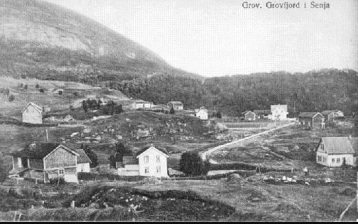 Grovfjord
