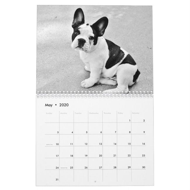 French Bulldog Calendar 2020 Black White Custom Zazzle Com