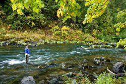 The North Umpqua River– Oregon fly fishing trip | Fly Water Travel