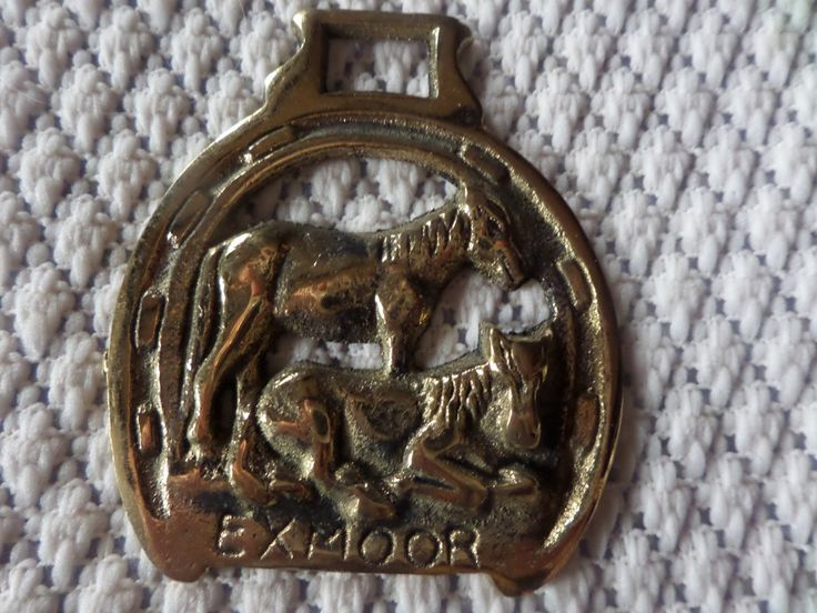 Horse brass, Exmoor ponies, two ponies,  horse brass, vintage horse brass, horse tack, horse medallion, equestrian brass, brass medallion by MaddisonsRainbow on Etsy