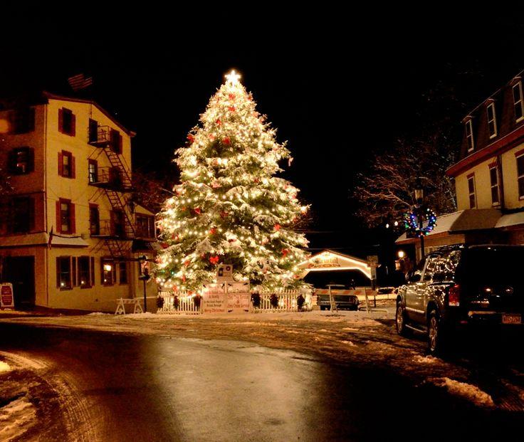 Christmas Trees Bristol: Big Christmas Tree, Rustic