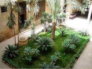 Decoração de Casas e Jardins Pequenos com Plantas Maiores