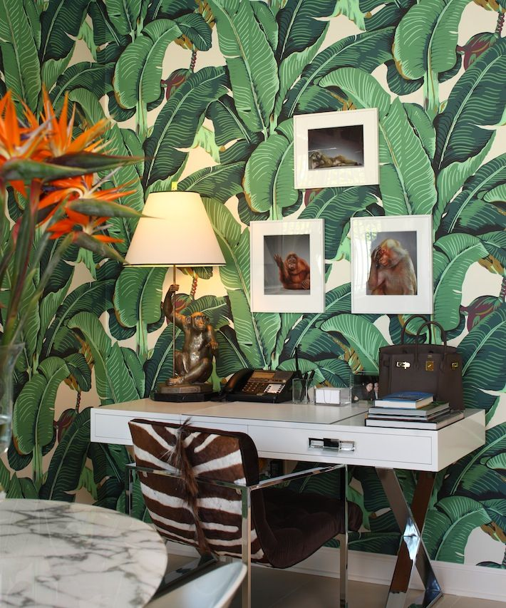 """Palm Beach, Florida, apartment designed by William T. Georgis (2006). Cabana with Martinique wallpaper (originally designed for the Beverly Hills Hotel), monkey collection. John Stewart X-frame desk and zebra-skin-clad Milo Baughman chrome chair. Georgis says, """"Think of Chantilly's Grande Singerie, which is decorated with paintings of monekys. It's screwball, it's sudden—it's a fabulous moment.""""  #InteriorDesign #Design"""