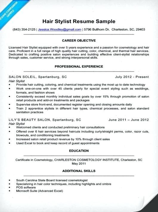 Fantastic Additional Skills Resume Sales Adornment Resume Resume