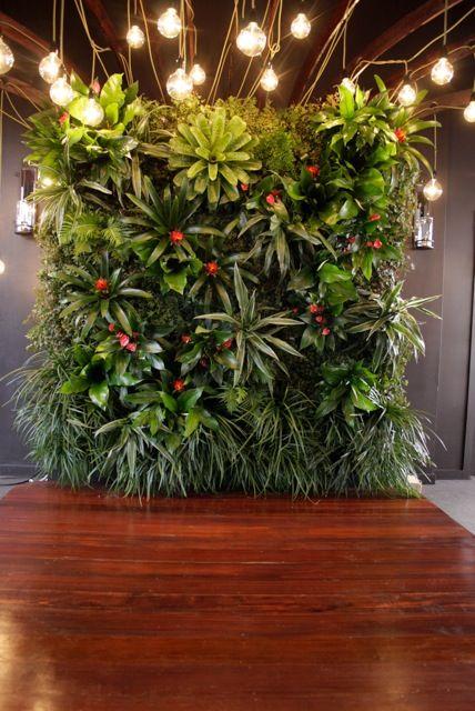 Green wall  Riva 6