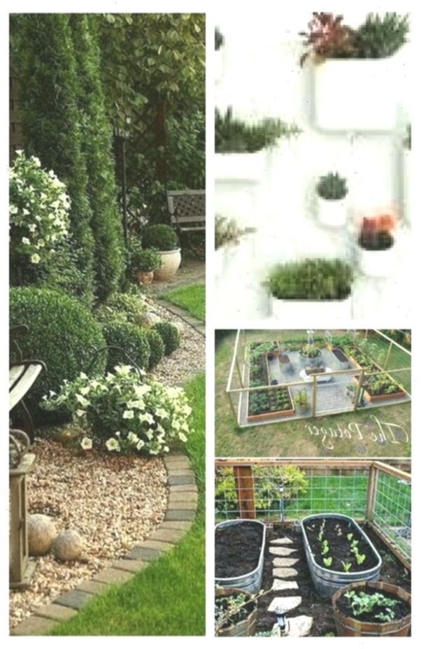 48 Ideas Apartment Garden For Beginners Articles Apartment