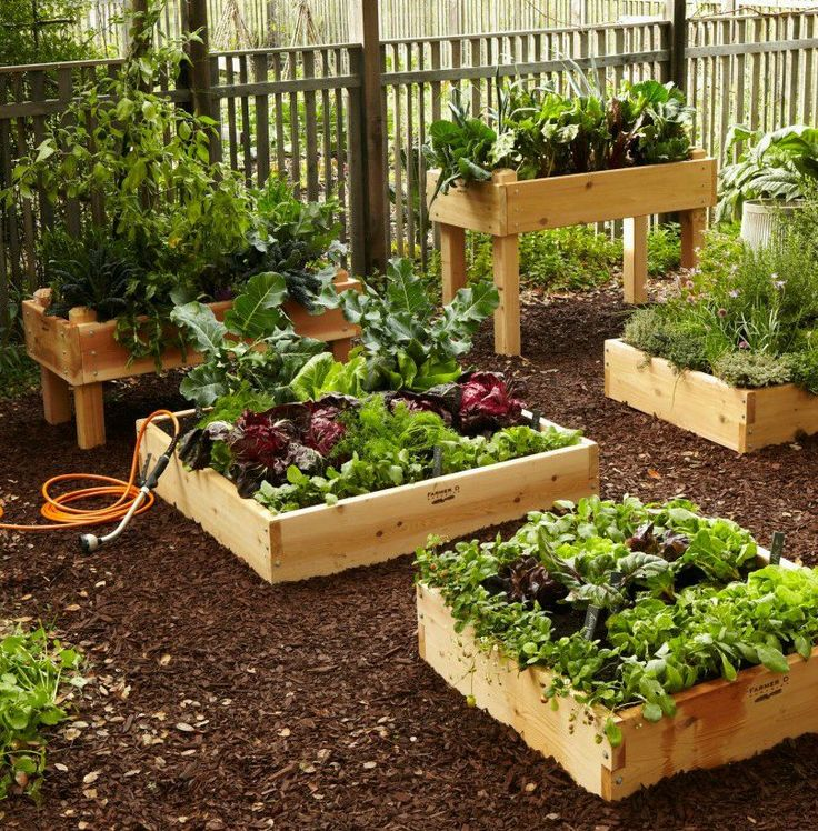 Planning your spring garden? Check out our Plant-A-Grams and make the most of every square foot! Herbs, veggies, leafy greens...what are you planting?: Gardens Boxes, Dream Backyard, Raised Beds, Gardens Idea, Kitchens Gardens, Beds Planters, Raised Planters,  Flowerpot, Gardens Growing