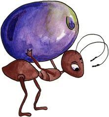 imagem decoupage clipart Ant02